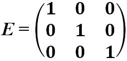 Единичная матрица